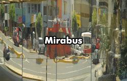 mirabus